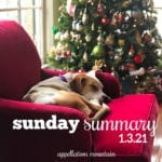Sunday Summary 1.3.21