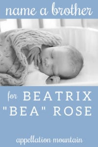 Name Help: A Brother for Bea