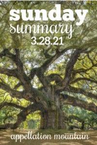 Sunday Summary: 3.28.21
