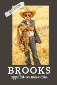 baby name Brooks