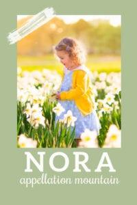 baby name Nora