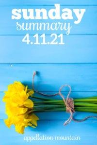 Sunday Summary 4.11.21