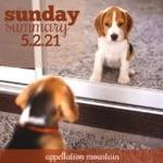 Sunday Summary 5.2.21