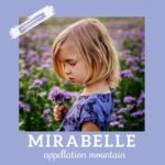 Baby Name Mirabelle: Lovely and Meaningful