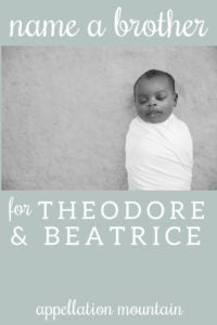 Name Help: A Brother for Theo + Bea