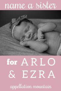 Name Help: A Sister for Arlo + Ezra