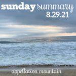 Sunday Summary: 8.29.21