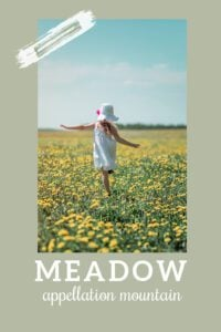 baby name Meadow