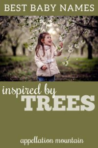 tree names for babies