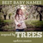 Best Tree Names for Babies: Arbor, Rowan, Acacia